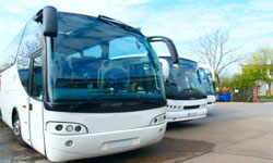 croatia bus coaches